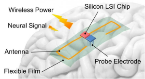 This is a picture of a proposed architecture of the implantable device composed of flexible antenna and CMOS circuits for wireless-powered neural interface systems. Credit: COPYRIGHT (C) TOYOHASHI UNIVERSITY OF TECHNOLOGY. ALL RIGHTS RESERVED.